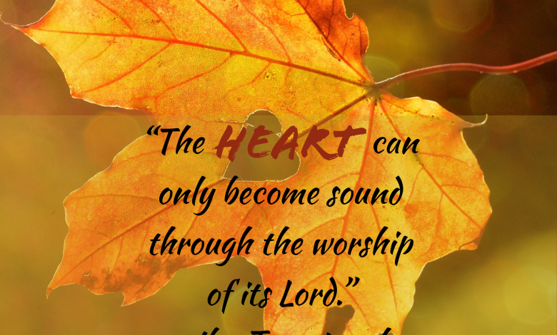 Photo of Friday Fuel: The Soundness of the Heart