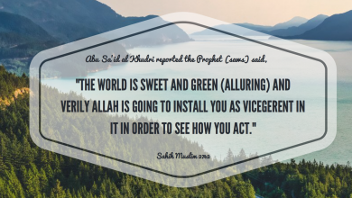 Photo of Preserving the creation of Allah (swt)