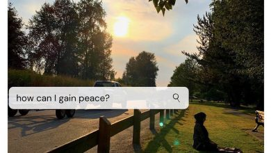 Photo of How can I gain peace?
